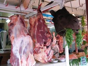 viande de chameau via ouimet-bourdon.net