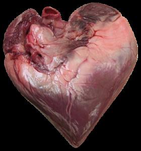 Coeur de bœuf via desencyclopedie.wikia.com