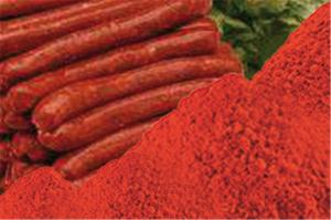 Mélange d'épices pour merguez avec colorant E120 carmin de cochenille via tompress.com