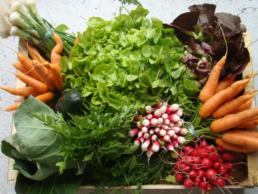 Panier de légumes printaniers via www.panier-fraicheur.sitew.com
