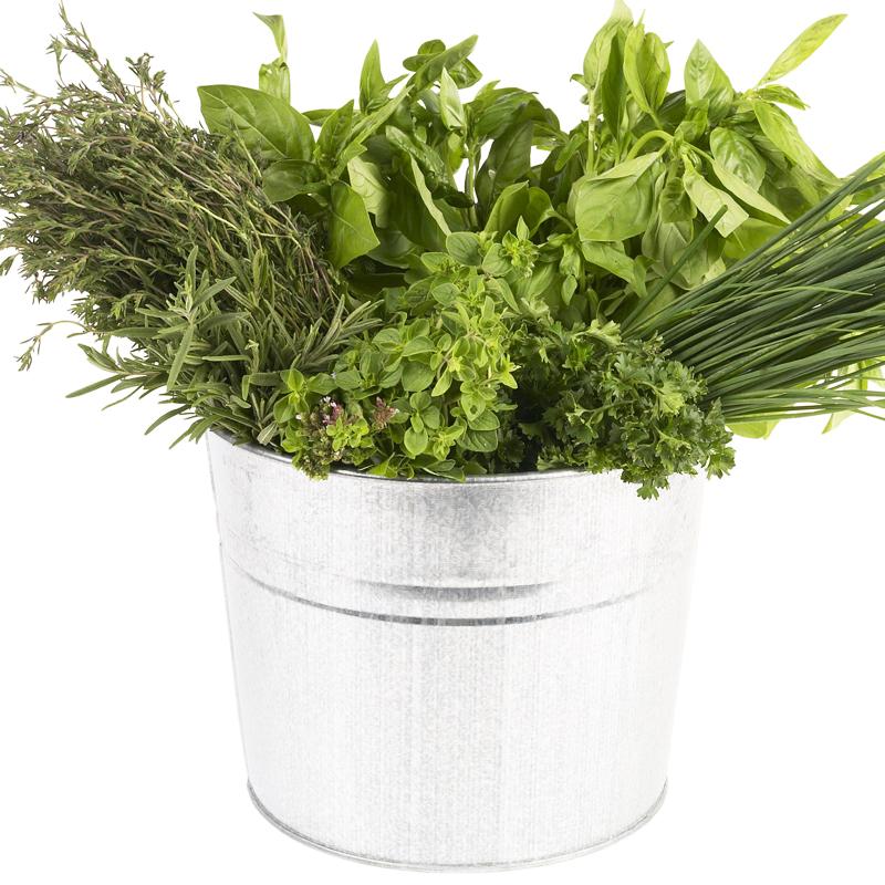 herbes aromatiques. Black Bedroom Furniture Sets. Home Design Ideas