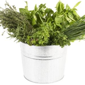 Herbes aromatiques via pluielles.fr