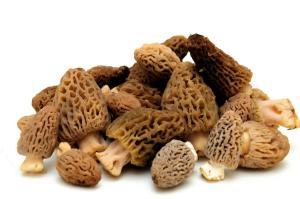Morilles via eaualabouche.blogs.france24.com