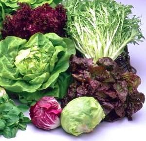 Salades via alldaylong.be