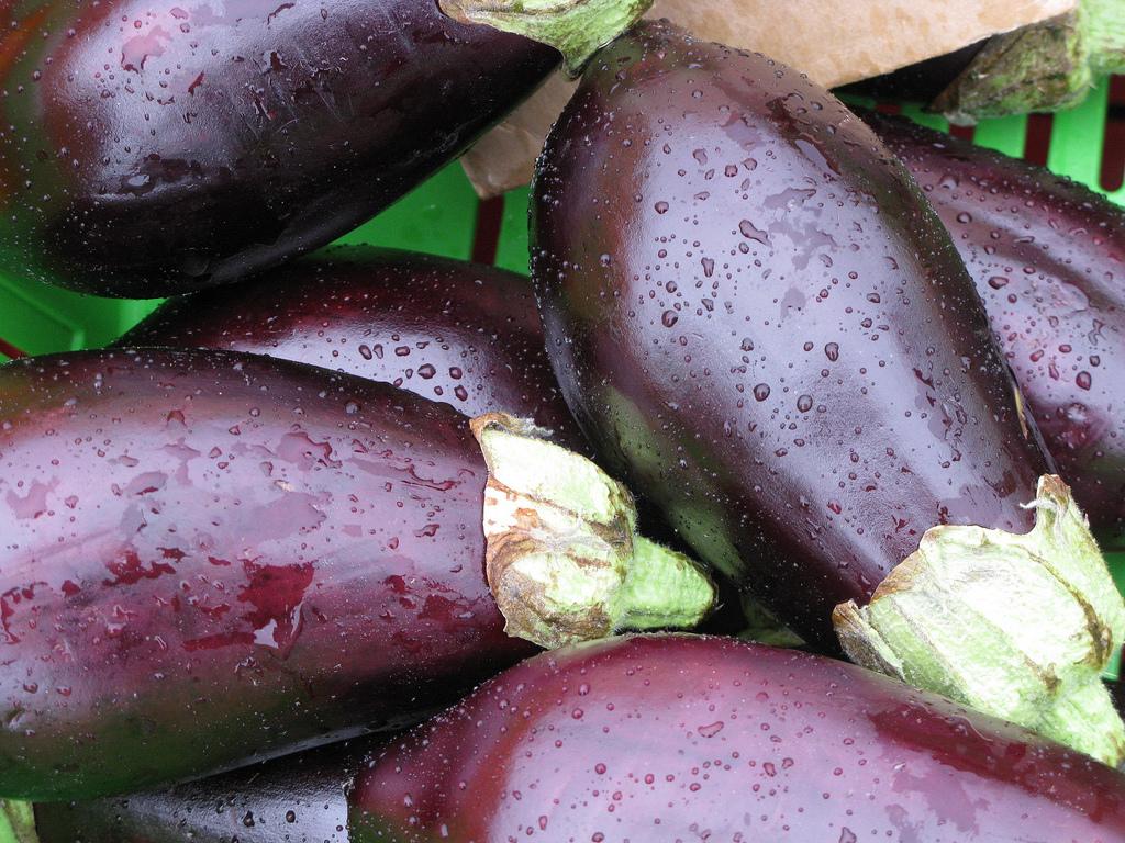 Parmesane d aubergines for Como cocinar la berenjena