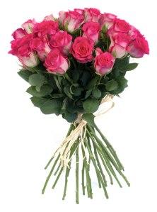Roses via 123fleurs.com