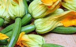 Fleurs de courgettes viadeco.fr