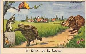 Le lievre et la tortue via environnement.ecole.free.fr