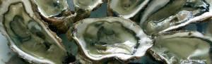 huitres_assiette via bernezac.com