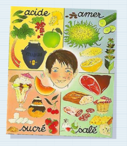 Les 4 goûts via ec-satonnet-echarcon.ac-versailles.fr