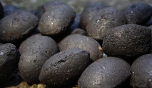 Boulets de charbon via fr.academic.ru