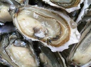 Huîtres via la-croix.com