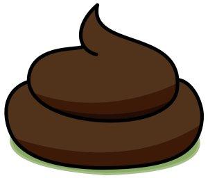 poop via thejrexperiment.com