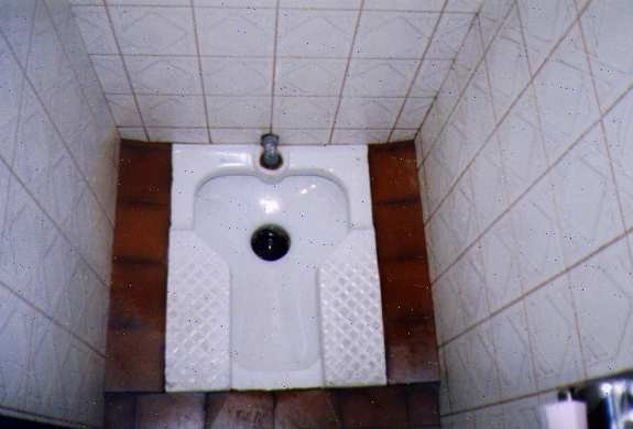toilettes à la turque via frankzappa.canalblog.com