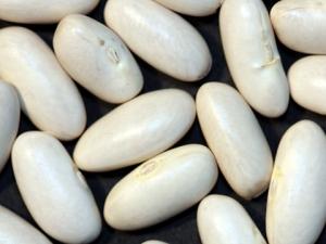Haricots grains via binette-et-jardin.com