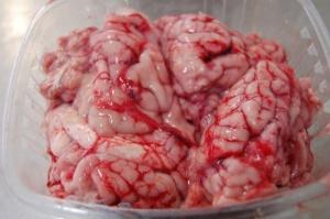 Cervelle de porc via ciprosain.be
