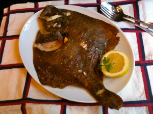 Turbot © Greta Garbure