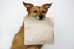 Doggy bag via tuscantraveler.com
