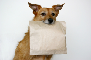 Doggy bag via tuscantraveler.com