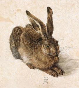 Jeune lièvre d'Albrecht Dürer 1502