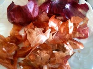 Tuniques d'oignons, échalotes et ail © Greta Garbure