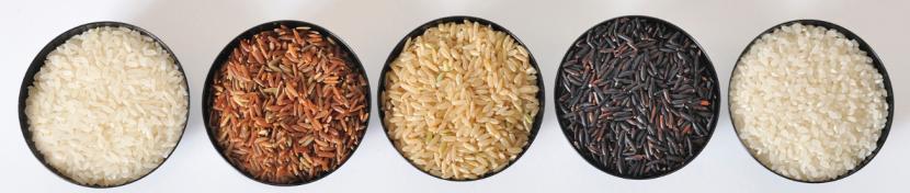 Les 5 riz de Camargue © Amarante Puget