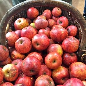 Panier de pommes © Greta Garbure