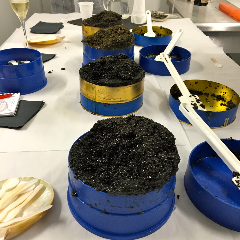 Dégustation de caviars © Greta Garbure