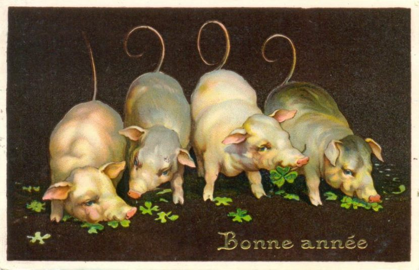Bonne Année cochonne