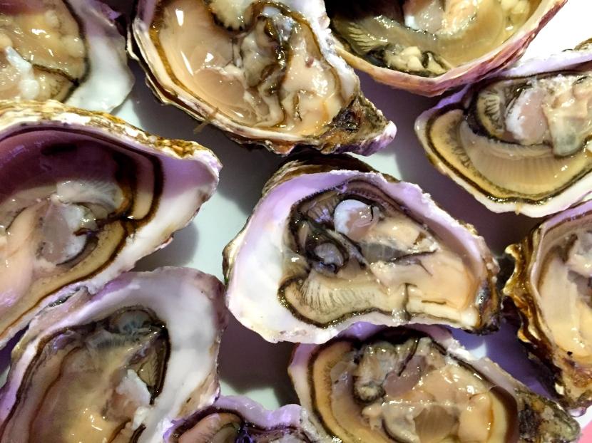 Huîtres de Normandie ouvertes @ Greta Garbure